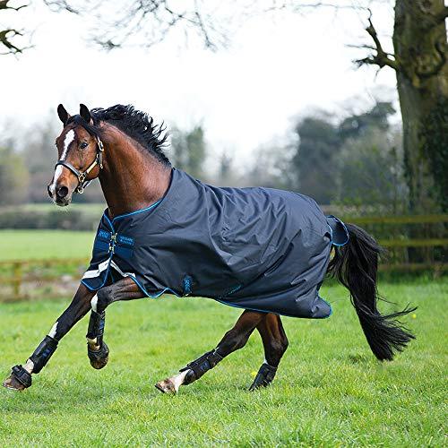 cheval avec couverture de protection